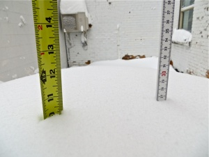 Readings of the snowfall at 8:30AM (CST) in downtown Fargo, North Dakota on February 11, 2013.