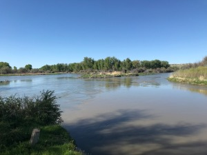 Confluence of Little Bighorn and Bighorn Rivers